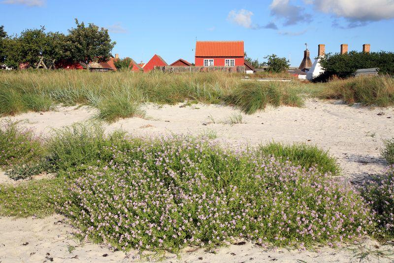 Hyggelige Ferien in Dänemark